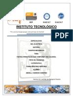 TIPOS DE CALDERAS.pdf
