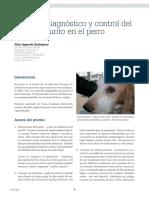 Cv 54 Enfoque Diagnostico Prurito Perro