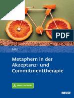 Metaphern in der ACT.pdf