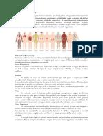 Sistemas do Corpo Humano.docx