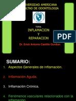 Inflamación y Reparación