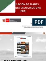 Formulación de PRA (2)