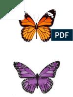 mariposas de colores.docx