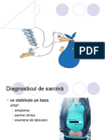 228596228-SARCINA.ppt