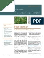 Rice Executive Brief En