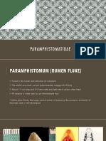 Paraphistomatidae