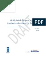 Ghidul Infiintarii Unui Incubator de Afaceri in Romania_draft_mai 2010