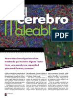 el-cerebro-maleable.pdf