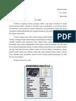 Artikel Mineral Covellite