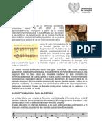 Sonido, Musica y Lenguaje Musical Tema V
