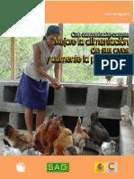 Como Hacer Alimentos Para Gallinas en Zona Rural