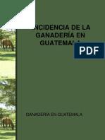 Incidencia de La Ganaderia en Guatemala