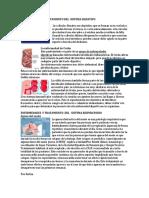 Enfermedades y Tratamiento Del Sistema Digestivo