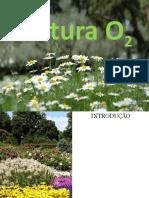 Natura O2- Apresentação 5 de Novembro