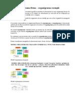 Model Organigrama Firma