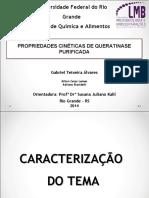 2014_10_14_Apresentação_mpu Final.pdf