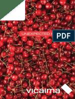 Vicaima Catalogo Geral Pt 9196