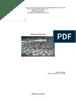 Proyecto Produccion de POLLOS de Engorde CARLO
