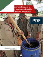 Produccion de bioinsumos - ABONOS ORGANICOS.pdf
