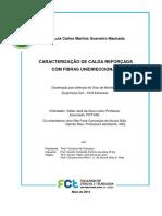 Machado_2013 E Calda Pag 32