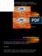 Sistema Nervioso Fisiologia 2012 II
