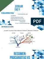 BM. Eucariotas vs Procariotas