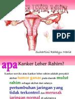 Kanker Leher Rahim 2