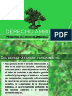AMBIENTAL PRECATORIO.pdf