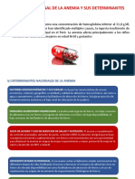 Anemia y Sus Determinantes DIAPOS