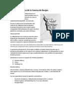 Sinopsis Geológica de La Cuenca de Burgos