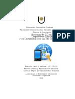 DM-SofiaVallejos-DAD.pdf