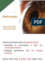 Aparatul vizual - ochiul