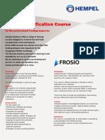 Frosio Flyer