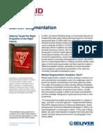 Market Segementation - PSU (India)