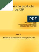 sistemas de produção de ATP aulas 2 e 3.pdf