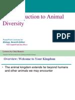 Animal Diversity Pearson