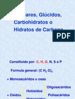 cbrevis-F101130-0-20060420104048