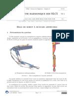 [AnaHSLCI][TD]Bras_de_robot_a_muscles_artificiels.pdf