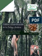 Palma Aceitera - Expo de Procesos - Ing Ambiental