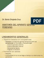 Clase 1 - Anatomía Del Aparato Genital Femenino