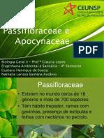 Passifloraceae e Apocynaceae
