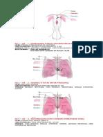 14. DU_3-1.pdf