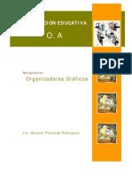 organizadores_graficos_preciado.pdf