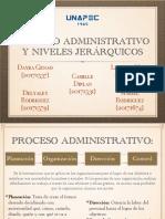 Proceso y Niveles