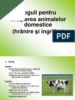 Reguli de Crestere a Animalelor Domestice