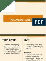 Lesson 5 - Med Parasitology - By Ms. Salibay - Lumen Dwelling Protozoa