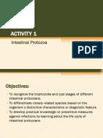 Activity 1 - Intestinal Protozoans(4)