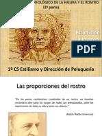 estudiomorfolgicodelafigurayelrostro2-121021185943-phpapp01