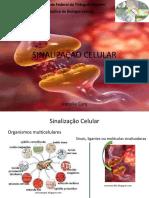 Aula de Sinalização Celular (2).ppt