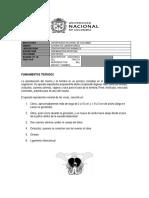 Guia de Laboratorio I-2018.docx
